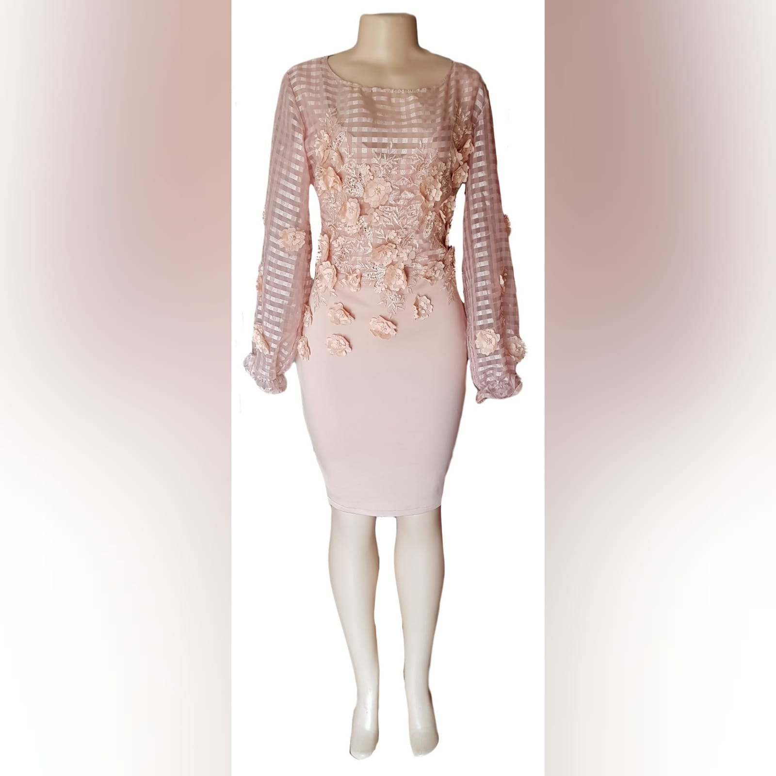 Pinky nude fitted knee length evening dress 3 pinky nude fitted knee length evening dress, bodice with striped sheer fabric, detailed with 3d lace & long bouncy sleeves.