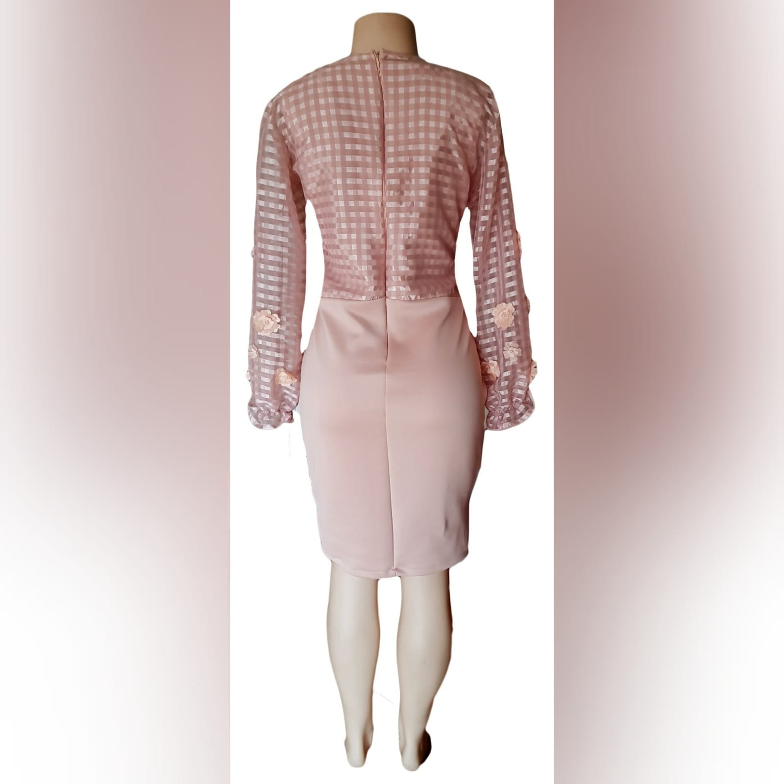 Pinky nude fitted knee length evening dress 4 pinky nude fitted knee length evening dress, bodice with striped sheer fabric, detailed with 3d lace & long bouncy sleeves.