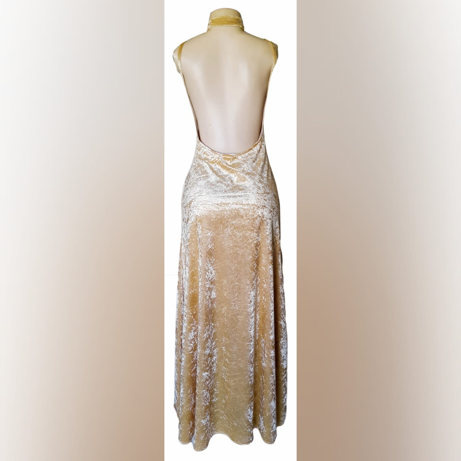 Champagne velvet long prom dress 4 champagne velvet long prom dress with a v neckline, rounded backless design with a high slit and a matching choker.